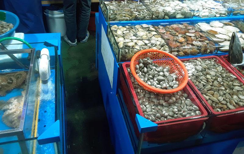 shellfish in fish market
