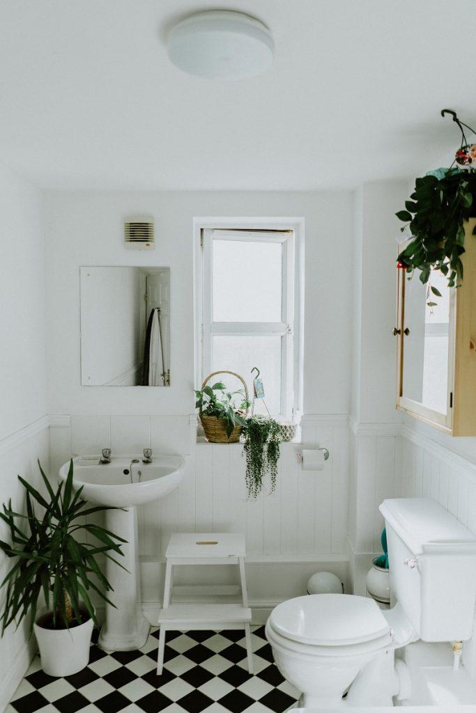 plants-bathroom