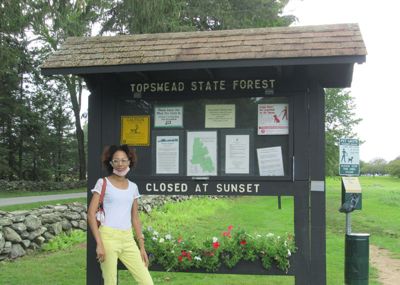 Topsmead-state-forest